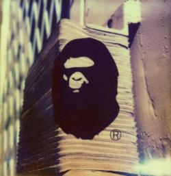 Ape Loading Area