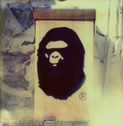 Ape Telecommunications